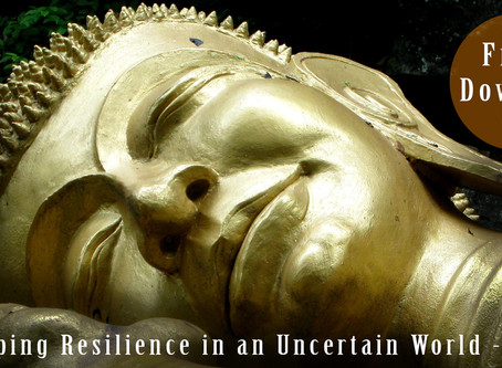 Developing Resilience in an Uncertain World - Part 3
