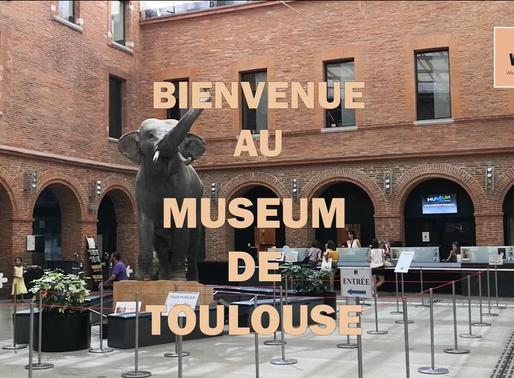 BIENVENUE AU MUSÉUM DE TOULOUSE