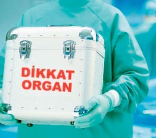 organnakli.jpg