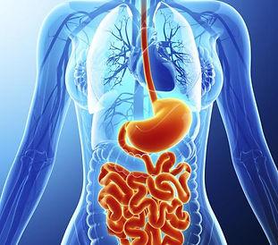 gastroenterology.jpg