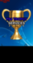 PS4 TROPHY.png