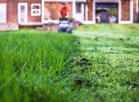 Spring Cleaning: Tips for a Safe, Energy-Efficient Home