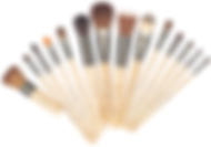 JI_brushes.PNG