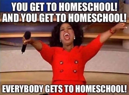 Oh hey, new homeschool friend!