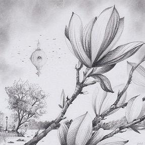 Magnolia detgränslösagränslandet gunnarfoley