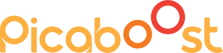 Picaboost_New Logo1 (3).png