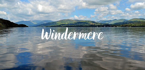 windermere website.png