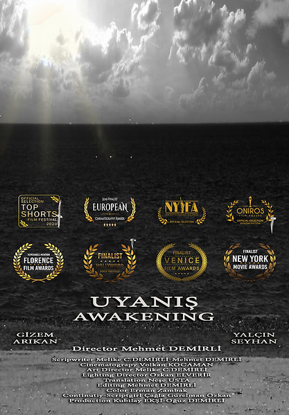 best short film Awakening.jpg