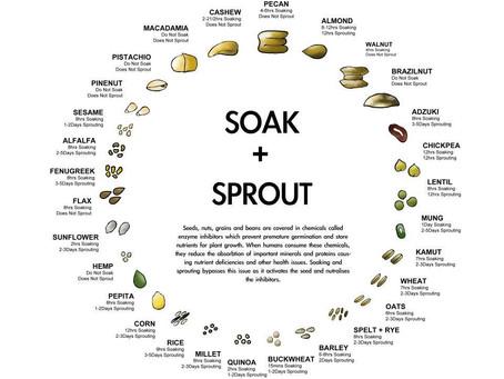 Как замачивать зерновые или бобовые продукты