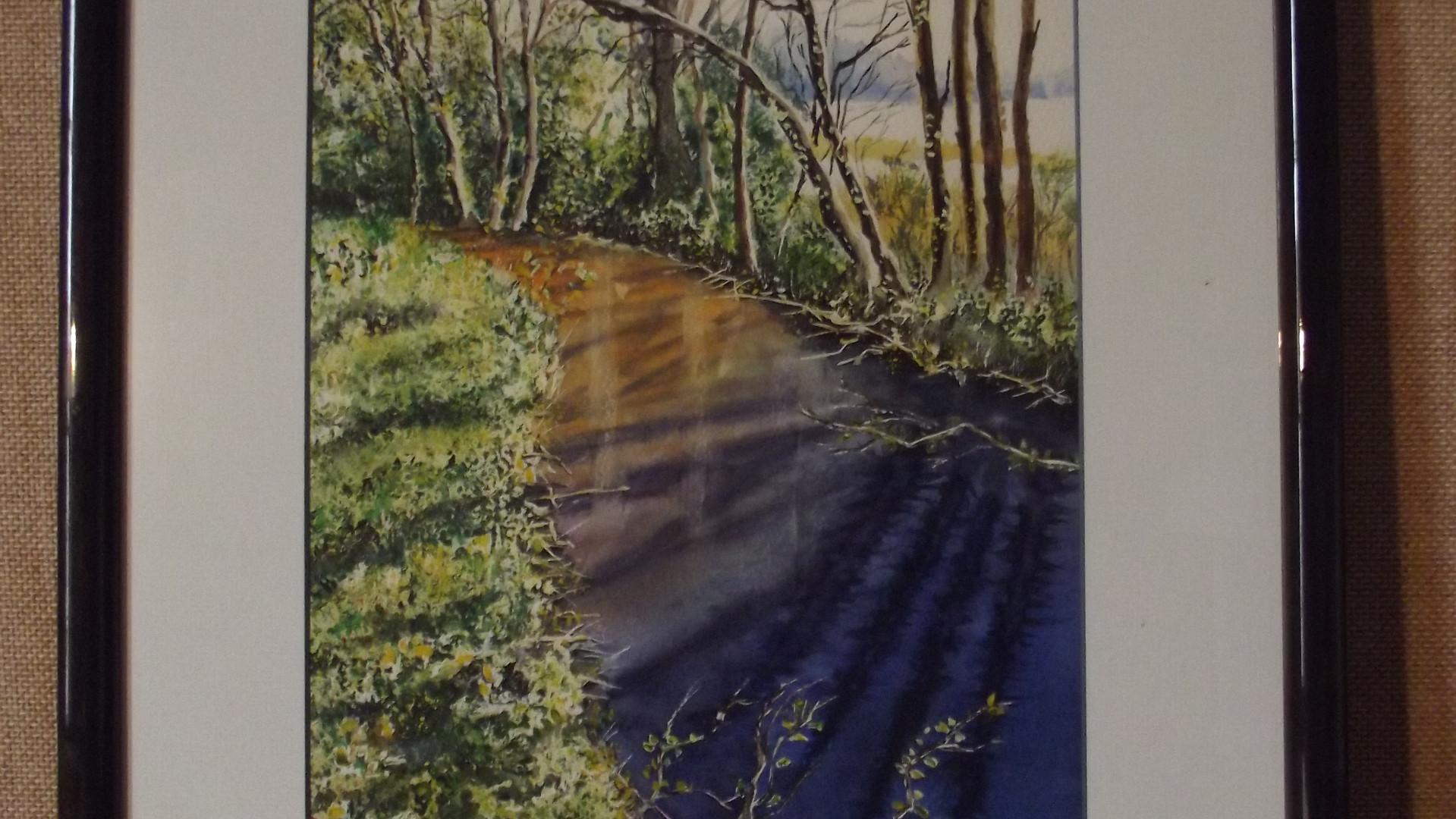 Sous-bois et cours d'eau