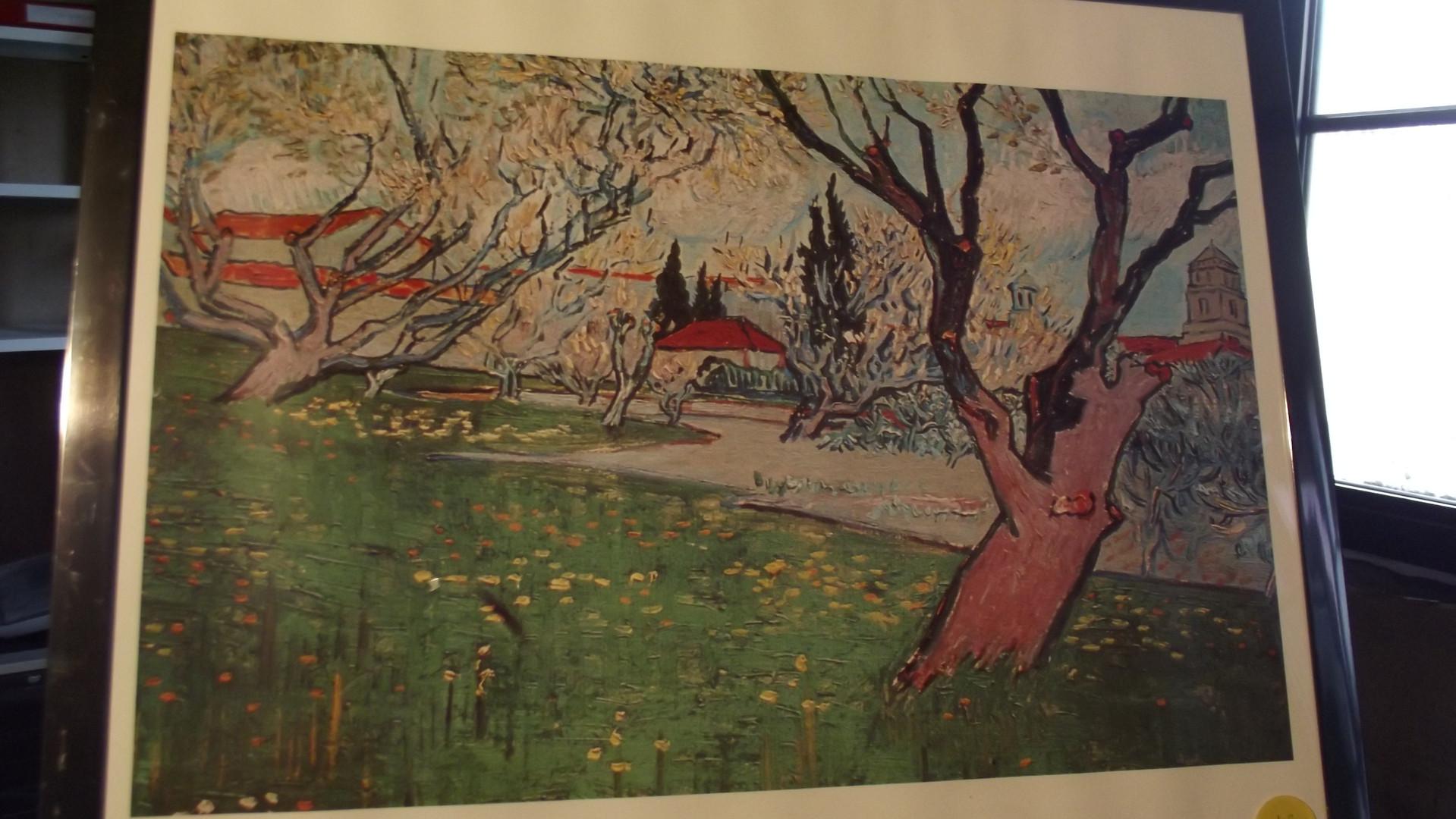 Vue d'Arles aux arbres en fleurs