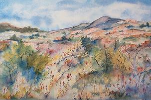 Wichita Mountain Magic, Prairie Landscape