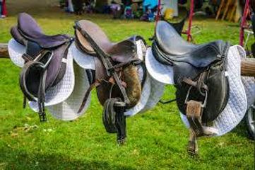 saddles.jpeg