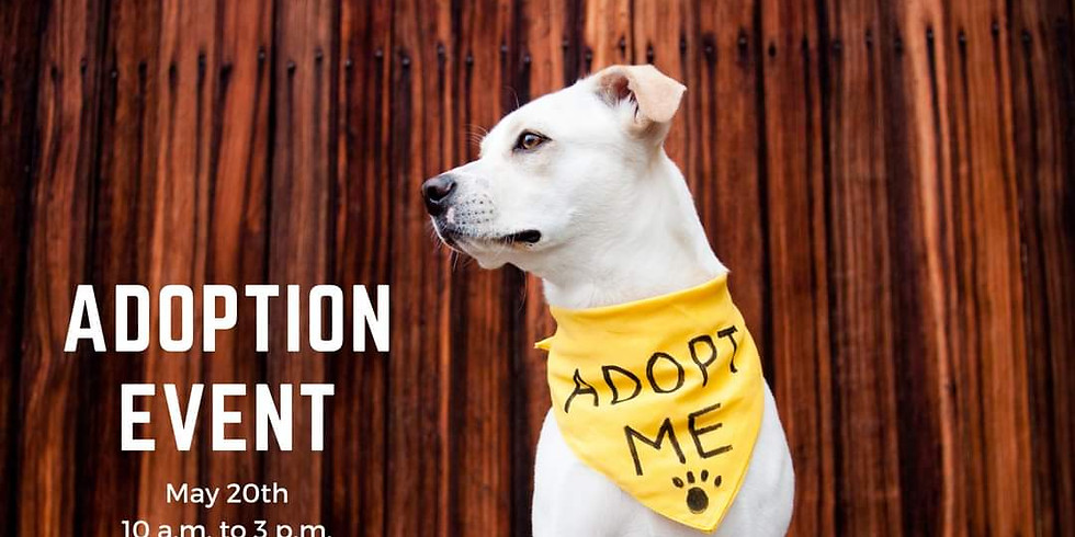 Adoption Event at First American Title