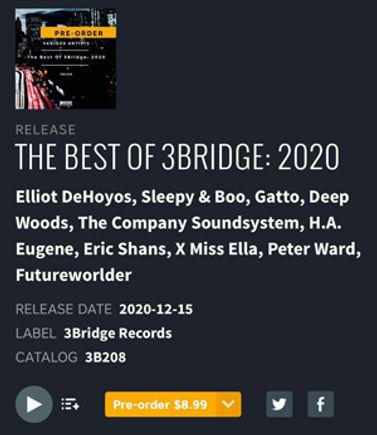 best-of-bridge-2020-300.jpg
