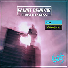 Consciousness-Elliot-DeHoyo.jpg