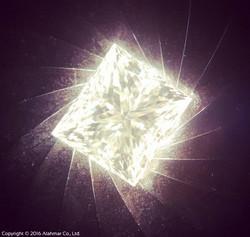 Fancy Cut Diamond