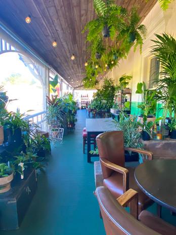 The Balcony at Botanik Bar.  #daydrinking