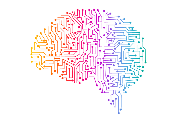 cerebro-neuroeducación-Learnsity.png
