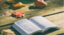 Holistic Biblical Literacy