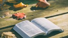 Holistic Biblical Literacy