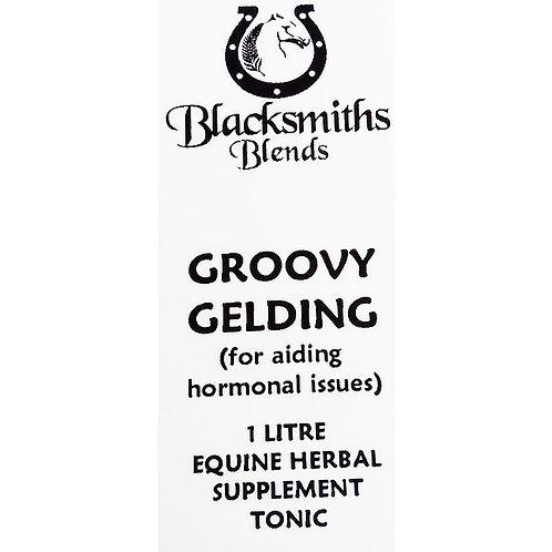 BLACKSMITH BLEND GROOVY GELDING - 1L