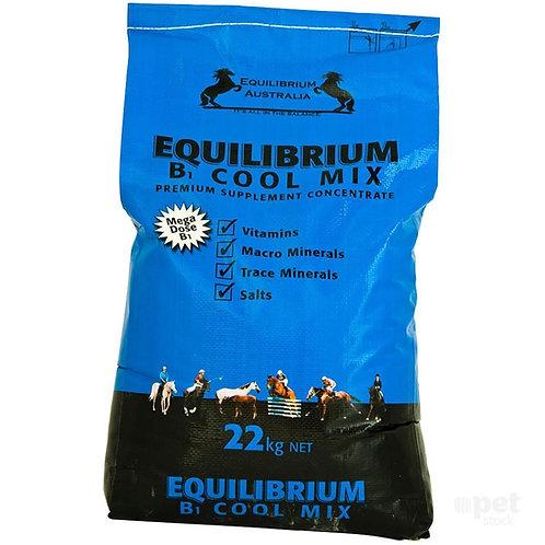 EQUILIBRIUM B COOL MIX - 22KG