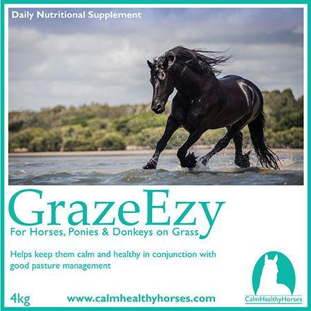 GRAZE EZY - 4KG CALM HEALTHY HORSES