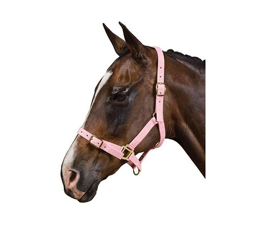 SAXON BRASS BUCKLE WEANLING/YEARLING HALTER