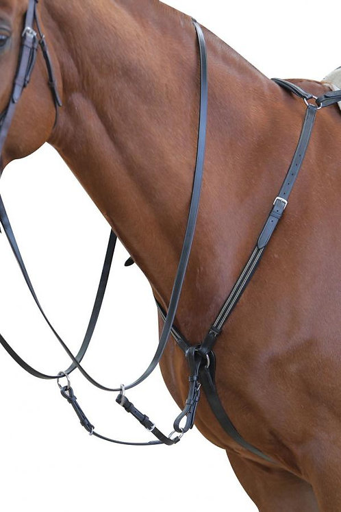 COLLEGIATE EVENT BREASTPLATE WITH MARTINGALE