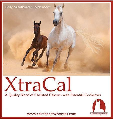 XTRACAL - 2KG CALM HEALTHY HORSES