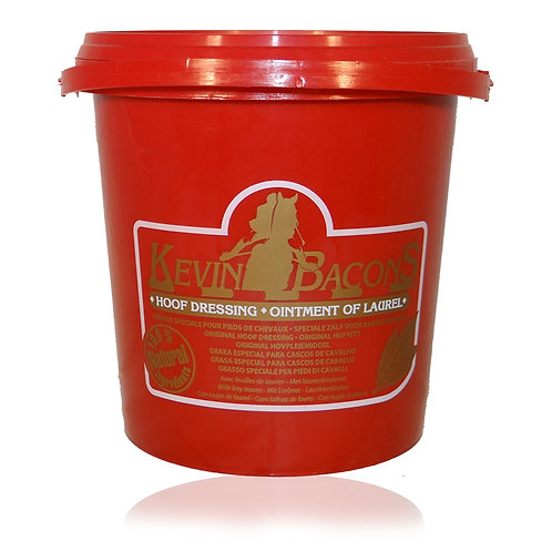 KEVIN BACON'S OINTMENT OF LAUREL 1L