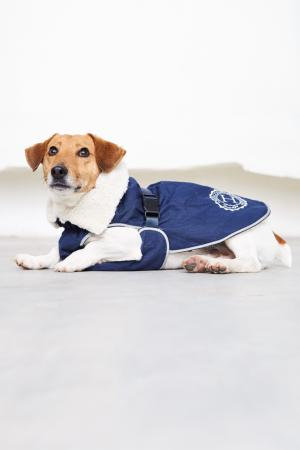 HARCOUR JOLY DOG RUG
