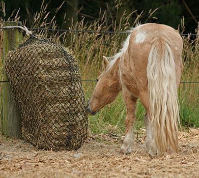 HAY SAVERS CALM HEALTHY HORSES