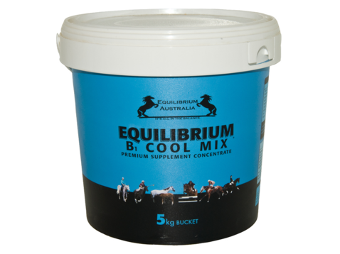 EQUILIBRIUM B COOL MIX - 5KG
