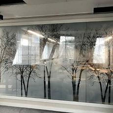Solar Graphics Glass Manifestations Essex & London