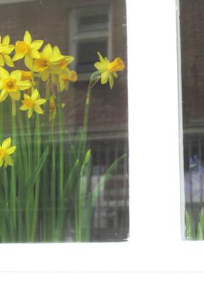 春をはこぶ音楽♪