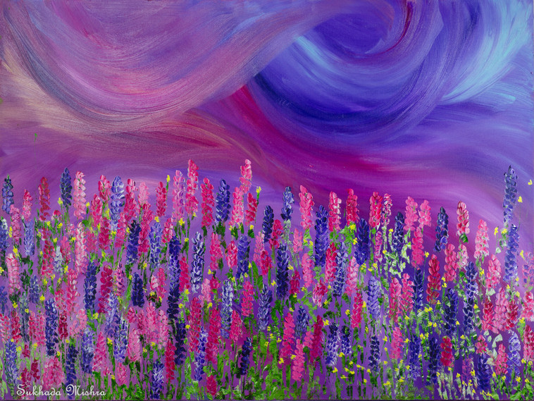 30X40 Lupine Wildflowers at Sunset
