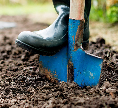 Worker%20digs%20the%20black%20soil%20with%20shovel%20%20in%20the%20vegetable%20garden%2C%20man%20loo