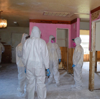 uiw mold remediation.JPG