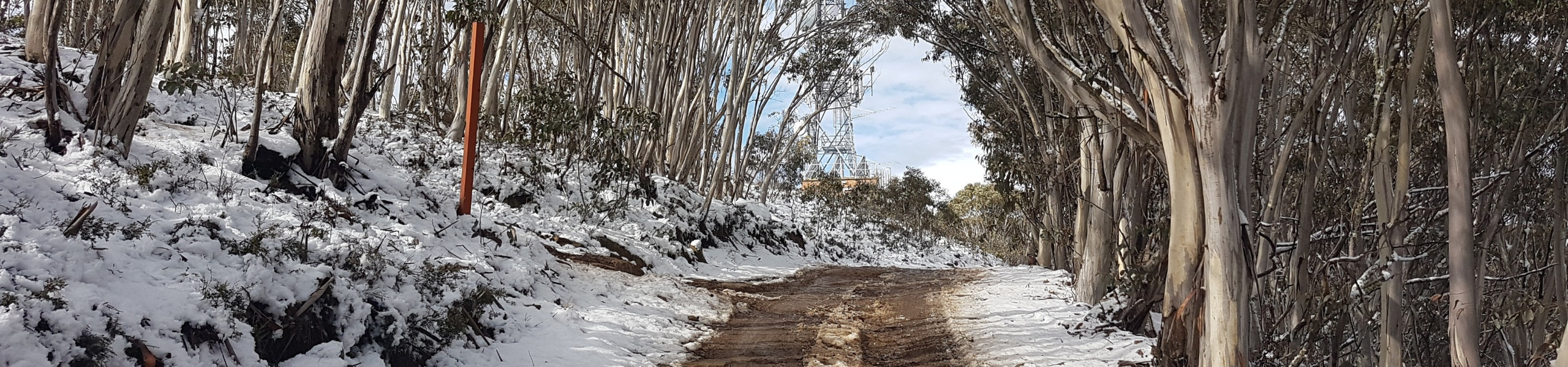 Mount Terrible Tower and road in snow winter no access fee