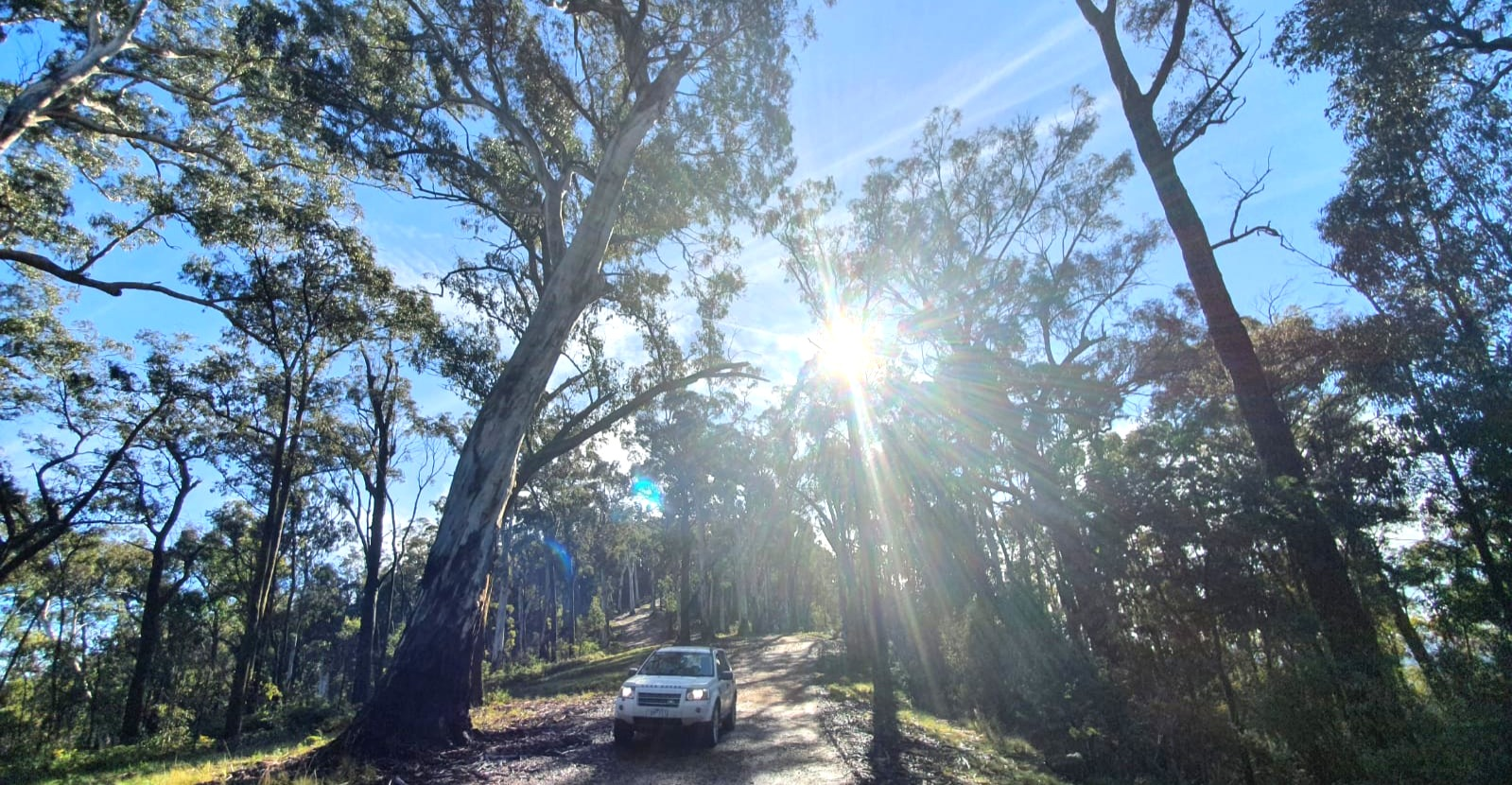 Mt Terrible 4wd trip beginner victoria high country