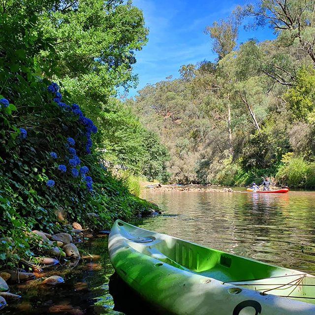 Kayak Jamieson River
