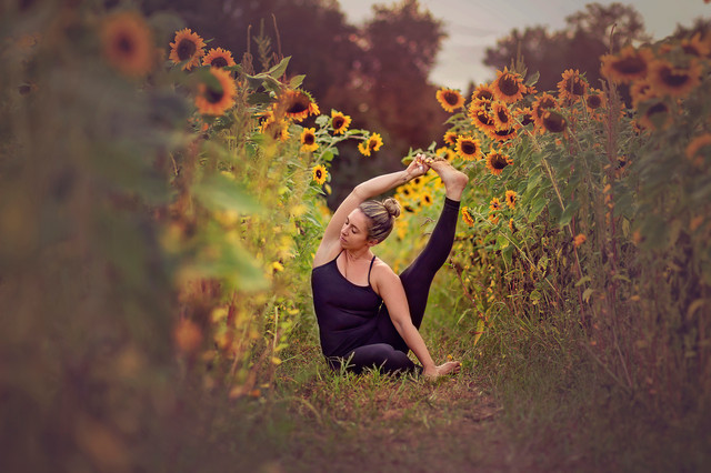 Limited Edition Sunflower Sessions