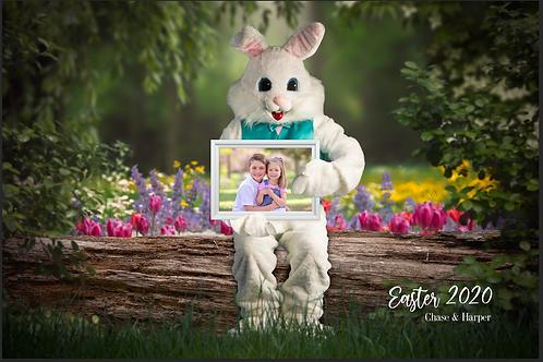2020 Easter Bunny Photos
