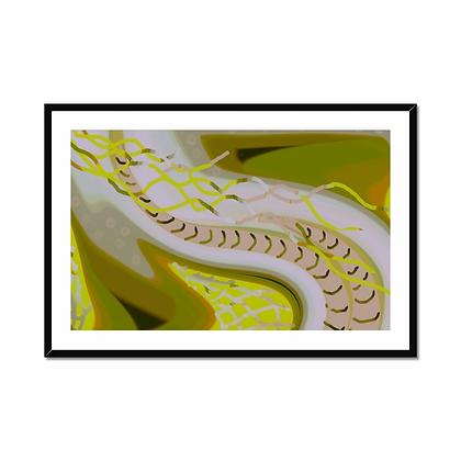 Snakey Framed & Mounted Print