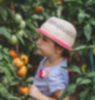 Child Picking Fruit_edited.jpg