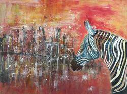 zebre en ville