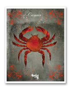 signe-zodiaque-cancer-evelyz