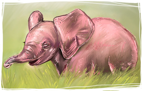elephant-rose